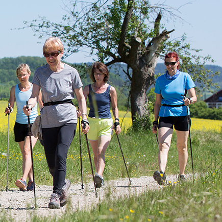 FIT MIT NORDIC WALKING